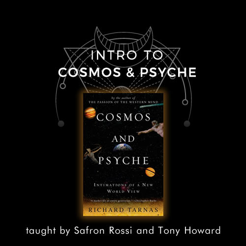 Cosmos and Psyche course